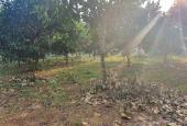 Chuyển nhượng 2.770m2 đất thổ cư siêu đẹp siêu rẻ tại Lương Sơn, Hòa Bình