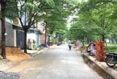 Đất gần chợ Bà Hom thổ cư 84m2 Tân Tạo - Bình Tân