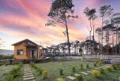 Mua đất Bảo Lâm 200m2 full thổ cư tặng nhà và vườn cây ăn trái, sang tên công chứng trong ngày