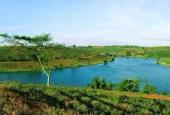 Bán đất nghỉ dưỡng Bảo Lộc cạnh khu du lịch Đồi Chè Tâm Châu giá siêu rẻ