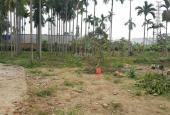 Chính chủ cần bán đất thôn Hoàng Lâu, xã Hồng Phong, Huyện An Dương, TP Hải Phòng