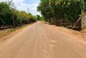 Cần sang nhượng vườn trái cây 4.3 ha tại Xuân Lộc. Đang cho thu nhập 1 tỷ/năm