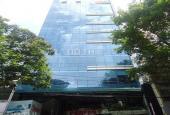 Bán tòa cao ốc Quận 1, Lê Thị Hồng Gấm, 13.2x22m, 1 hầm + 10 lầu