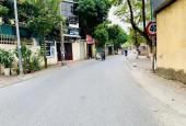 Bán đất ngõ 42 phố Sài Đồng DT 96,5m2 MT 4m đường rộng kinh doanh tốt