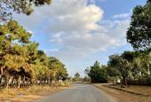 Bán đất thổ cư hẻm 960 Trường Chinh giá 350 triệu
