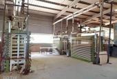 Ngân hàng phát mại nhà xưởng và thiết bị máy móc tại huyện Tân Sơn, Phú Thọ giá cực rẻ
