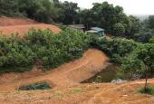 Bán 5415m2 đất thổ cư phân khúc nghỉ dưỡng giá rẻ tại xã Nhuận Trạch, Lương Sơn, Hòa Bình