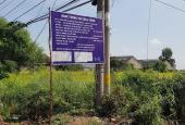Bán đất mặt tiền Tỉnh Lộ 15, Xã Tân Thạnh Tây, Củ Chi 10.800m2 đất CLN và CHNK. Giá: 4tr/m2