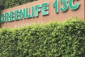 Bán đất biệt thự có sổ đỏ 13C Greenlife sát bên trường Quốc tế Albert Einstein giá 34 tr/m2