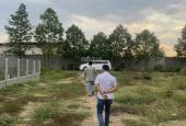 Bán đất vườn đất Tỉnh Lộ 7, xã Thái Mỹ 5300m2 giá 1.2tr/m2 SHR ký ngay