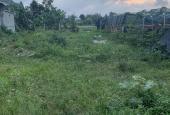 Bán đất 119m2 Điện Hoà, Thị Xã Điện Bàn, Tỉnh Quảng Nam