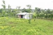 Chính chủ cần bán đất tại Xuân Lộc, Đồng Nai