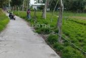 Bán đất vườn thôn Bình An 2, Long Thành, Tuy Phước, Bình Định