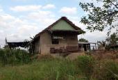 Chính chủ bán lô đất nhà vườn mặt tiền cực đẹp 477m2 tại Tân Phú Đông, Tiền Giang