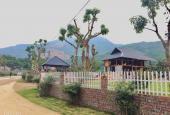 Chỉ với hơn 4tỷ sở hữu ngay lô đất 1538m2 sẵn nhà + khuôn viên đẹp như mơ tại Hợp Hoà - Lương Sơn