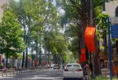 Bán nhà mặt tiền con đường thương hiệu Bùi Thị Xuân Phường Bến Thành quận 1 338 m2