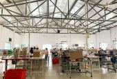 Chính chủ cho thuê 4000m2 kho xưởng có sẵn thiết bị tại Huỳnh Thị Dần - Bình Mỹ Củ Chi