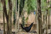 Đất sào xã Phước Bình giá rẻ, quy hoạch đất ở (ONT)