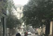 Bán nhà đất 103m2 mặt phố Linh Lang - Ba Đình - Hà Nội