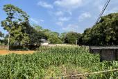 Cần bán gấp 611m2 đất thổ cư 2 mặt tiền tại Nhuận Trạch ,lương Sơn,Hòa Bình.