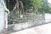 Chính chủ bán lô đất ở thôn 7 Tân Xã, rẻ hơn xung quanh từ 4 - 5tr/m2, sổ sẵn