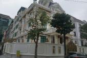 Bán nhà biệt thự, liền kề tại Đường Thành Thái, Phường Yên Hòa, Cầu Giấy, Hà Nội diện tích 280m2