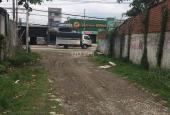 Đất Vĩnh Lộc giá rẻ Bình Chánh, TP. HCM