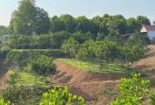 Bán phân khúc nghỉ dưỡng giá rẻ, cạnh dự án Green Oasis Villas tại Lương Sơn, Hòa Bình.