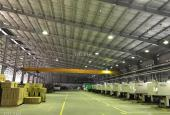 Cần bán nhà xưởng 15000m2 trong KCN Mỹ Phước 2, Bình Dương