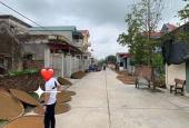 Cần bán gấp mảnh đất xóm Nam, Yên Dương, Khánh Dương, Yên Mô