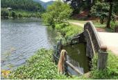 Chính chủ cần bán 2500m2 đất giá rẻ tại Thanh Hà Xanh, Nam Sơn, Sóc Sơn, Hà Nội