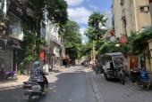 Bán nhanh cho nhà đầu tư mặt phố khu Hoàng Ngọc Phách, Nguyên Hồng, Huỳnh Thúc Kháng, 50m2