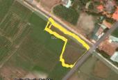 Sang nhượng 117m2 thổ ngay trung tâm Hàm Liêm, mặt tiền mở rộng 30m, tặng 62m2 đất lúa