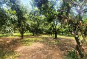 Đất 1000m2 thổ cư, sát hồ Trị An, giá 975 tr/vườn, sổ riêng