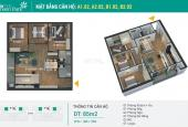 Bán căn hộ chung cư tại dự án Green Park Trần Thủ Độ, Hoàng Mai, Hà Nội diện tích 85m2 giá 2.55 tỷ