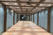 Cực hiếm: Mặt phố Văn Miếu 110m2, 6T thang máy, mặt tiền 7m, kinh doanh cực đỉnh, giá hơn 70 tỷ