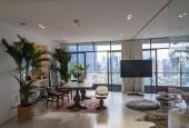 Chính chủ bán căn hộ diện tích 145m2 thiết kế 1 phòng ngủ hiện đại tại City Garden (LH: 0909755794)