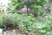 Bán lô đất gần Tỉnh Lộ 417 tại Phương Đình, Đan Phượng, Hà Nội, đường ô tô tải