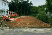 Bán đất Tân Định MT đường nhựa 6m thông phía sau sau UBND DT 7x40m TC 85m2 xây trọ cực đẹp