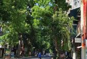 Mặt phố Bà Triệu, Hai Bà Trưng, 230m2 x MT 7m nhỉnh 90 tỷ, 0989191397