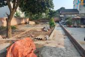 Cần bán gấp đất (101,5m2) Dược Hạ - Tiên Dược - Sóc Sơn