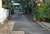 Bán đất tại đường 1/ Bùi Quốc Khánh, Chánh Nghĩa, Thủ Dầu Một, Bình Dương 100 m2 giá 2.890 tỷ