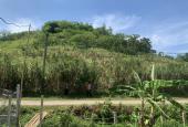 Bán rẻ 3008m2 đất chính chủ, đường rộng 11m, cao, thoáng, view đẹp, Cao Phong - Hòa Bình