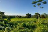 Bán đất Cao Phong 3000m2 toàn bộ là đất vườn, thế đất bằng phẳng view thoáng. Giá đầu tư