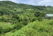 Chính chủ cần bán 1ha có 400m2 đất thổ cư còn lại là đất vườn ở Bắc Phong - Cao Phong, view thoáng