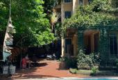Siêu biệt thự sân vườn trung tâm Ba Đình 400m2 - 3 tầng 1 tum. Cuộc sống xanh giữa lòng Hà Nội