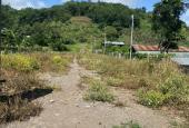 Bán đất vườn Nhân Nghĩa - Cẩm Mỹ giá mềm 450 triệu/ sào
