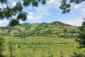 Bán gấp 4344m2 400m2 thổ cư tại Nam Phong, Cao phong