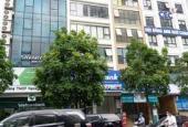 Bán 208m2 đất đấu giá phố Nguyễn Quốc Trị, Nam Trung Yên, Cầu Giấy, mt 13m