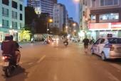 Chính chủ bán đất 60 phố Đặng Văn Ngữ, quận Đống Đa, Hà Nội - 160m2 - Miễn TG